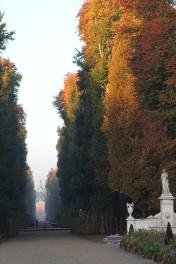 Sanssouci Herbst / Autumn 2012