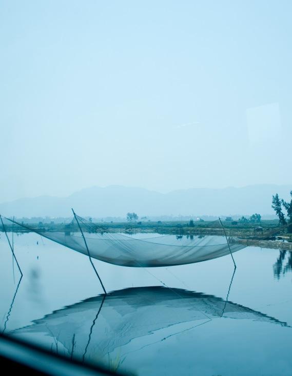 Fish nets 2