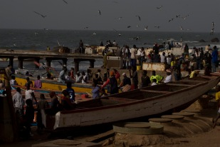 Gambia Fishmarket