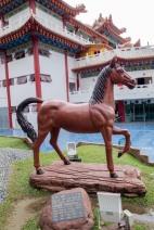 Horse2 copy