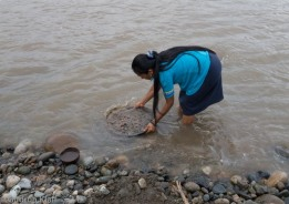 Digging for gold in Rio Napo